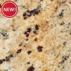New! Sample - Custom Countertop New Venetian Gold Granite