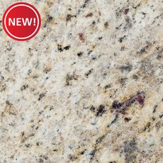 New! Sample - Custom Countertop Giallo Ornamental Granite