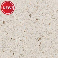 New! Sample - Custom Countertop Silver Birch Quartz
