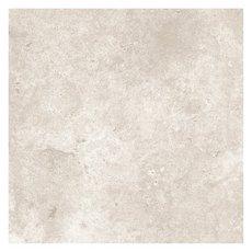 Vermont Gray Polished Porcelain Tile 18 X 18 100106749