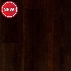 New! Alba Brown Birch Smooth Solid Hardwood
