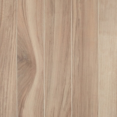 Aspen Natural Polished Wood Plank Porcelain Tile