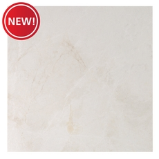 New! French Vanilla Polished Marble Tile