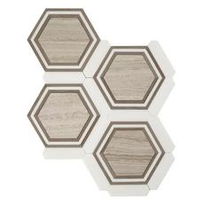 Carrara Thassos Valentino Framed Hexagon Marble Mosaic