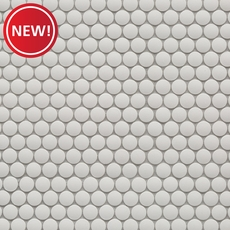 New! Unglazed White Penny Porcelain Mosaic