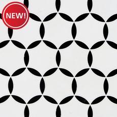 New! Atlas Thassos Nero Polished Water Jet Marble Mosaic
