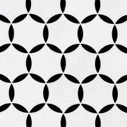 Atlas Thassos Nero Polished Waterjet Marble Mosaic