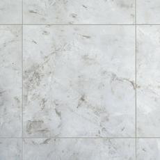 Crystal Gris Polished Porcelain Tile 24 X 24 100484765