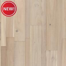New! Seashell Acacia Solid Hardwood