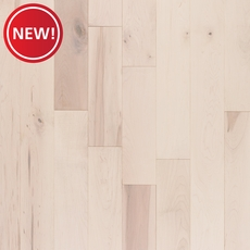New! Evian Maple Smooth Solid Hardwood