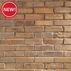 New! Georgia Clay Reclaimed Brick