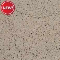 New! Ready to Install Stellar Gray Granite Slab Includes Backsplash