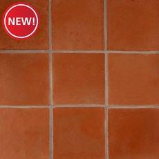 New! Sealed Saltillo Tile
