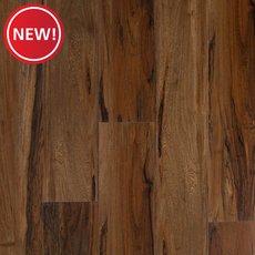 New! Auburn Acacia Rigid Core Luxury Vinyl Plank - Foam Back