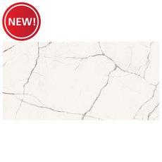 New! Vittorio Bianco Polished Porcelain Tile
