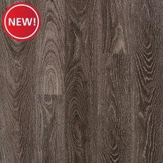 Oak Shore Beach Coco Laminate - 12mm - 100584713 | Floor and Decor