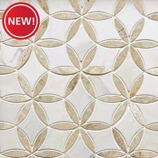 New! Marseille Crema Royal Dolomite Waterjet Mosaic