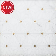 New! Nova Dolomite Brass Polished Marble Mosaic