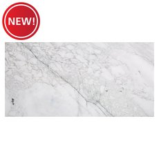 New! Calacatta Storia Polished Marble Tile