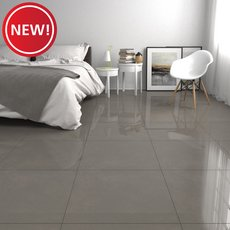 New! Concept Gray II Polished Porcelain Tile