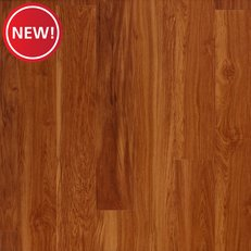 New! Ginger Oak High Gloss Water Resistant Laminate