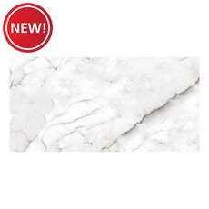 New! Carlini Bianca Polished Porcelain Tile