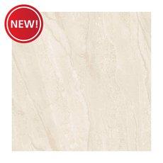 New! Landen Polished Porcelain Tile