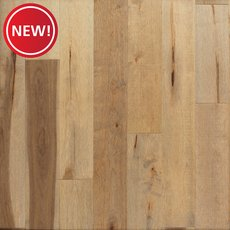 New! Hazel Maple Distressed Solid Hardwood