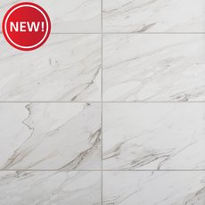 New! Altare Bianca Polished Porcelain Tile