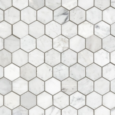 Carrara Collection Bianco Carrara Hexagon Polished Marble Mosaic